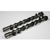 GSC S1 Camshafts Set - EVO X