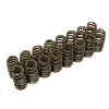 Cosworth High RPM Single Valve Spring set (16) 4G63 - EVO 8/9