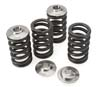 Brian Crower Springs & Retainers: EVO 8, 9, X
